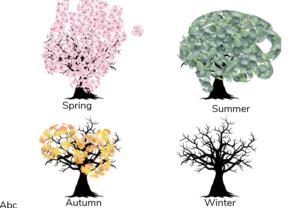 Evie's seasons